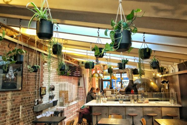 Made of Dough pizzeria plants indoor gardens