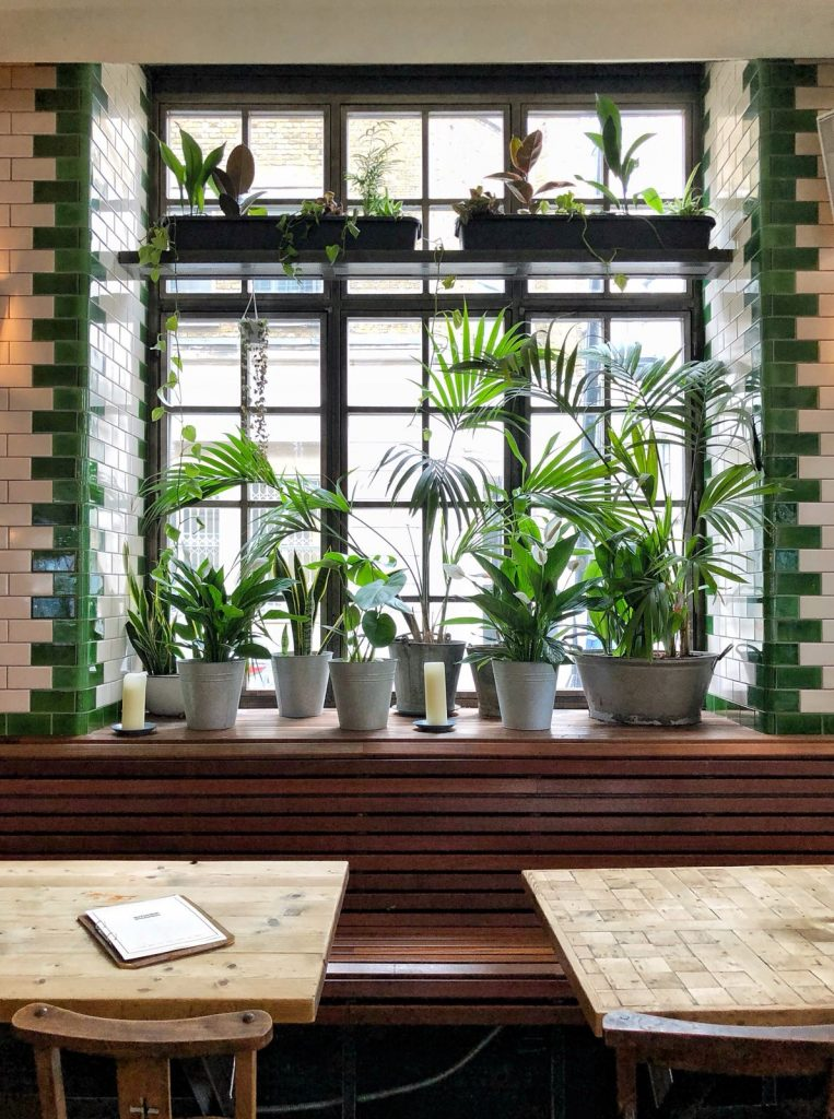 singer tavern barworks urban growth indoor garden design